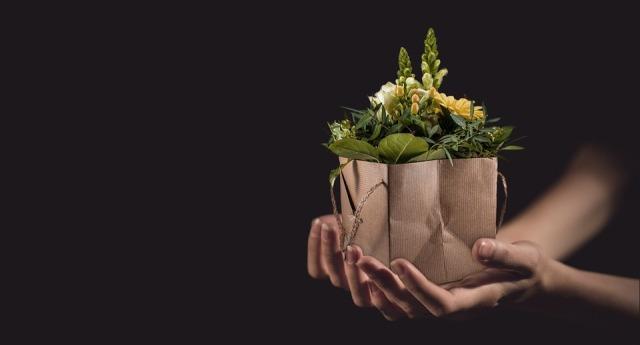 flowers-1338641_960_720